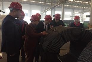 Lãnh đạo công ty thăm và làm việc tại Nhà máy Cáp Trung Quốc